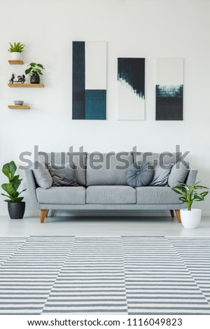 Posters above grey settee in bright living room interior with plants and patterned carpet. Real photo #1116049823