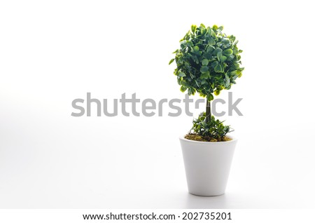 Pot plant isolated on white #202735201