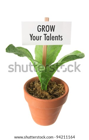 Pot Plant with Placard on White Background