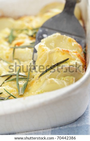 Potato and Kohlrabi gratin with rosemary in the white casserole