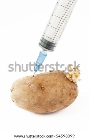 Potato and syringe. genetic modification food