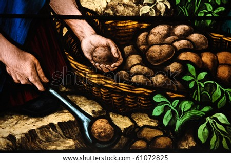 Potato Harvest. Stained glass window created by F. Zettler (1878-1911) at the German Church (St. Gertrude's church) in Gamla Stan, Stockholm.
