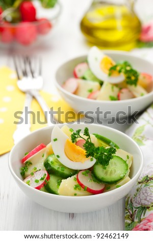 potato salad with egg,radishes and cucumbers