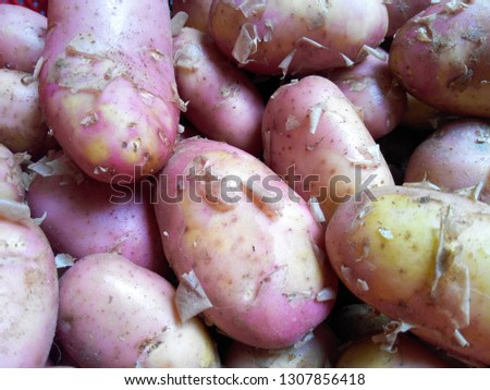 Potato vegetable picture
