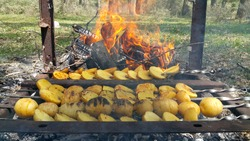 Potatoes are fried on hot coals. From the pieces of coal rises smoke, fire and the smell of barbecue. Summer recreation environment in the forest. Tourist dishes in nature.