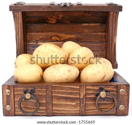 Potatoes are the treasure and currency of ireland, isolated over white, macro closeup, close up with copy space. - stock photo