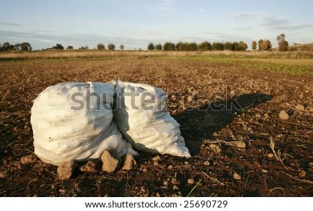 Infertile Soil Infertile Soil