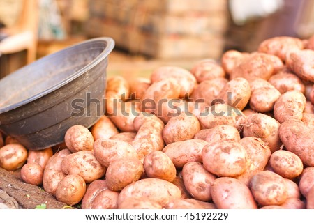 Potatoes from Moroccan Market