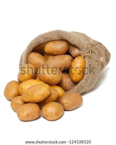 potatoes spilling from burlap bag isolated on white