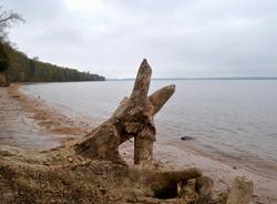 Potomac River, Wades Bay, Maryland
