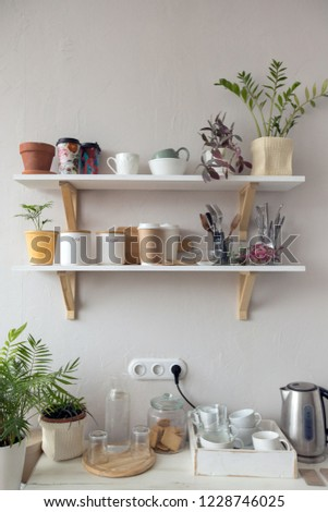 Pots with various houseplants and assorted dishware standing on shelf and cupboard in cozy kitchen