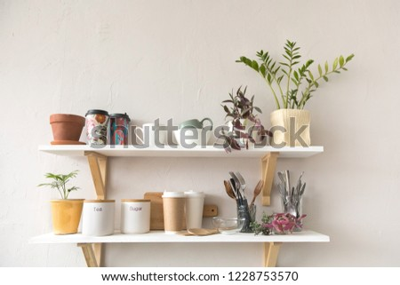 Pots with various houseplants and assorted dishware standing on shelf in cozy kitchen
