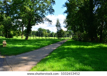 Potsdam park alley. Summer landscape. - Shutterstock ID 1032653452