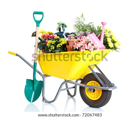 potted flowers and gardening equipment isolated on a white background