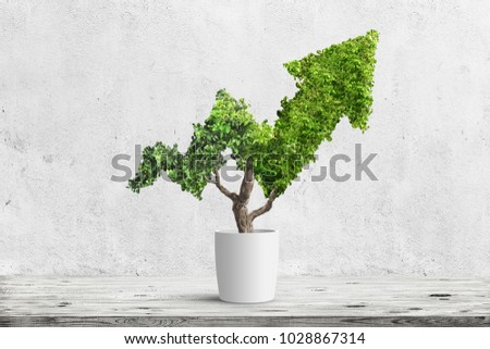 Potted green plant grows up in arrow shape over blue background. Concept business image #1028867314