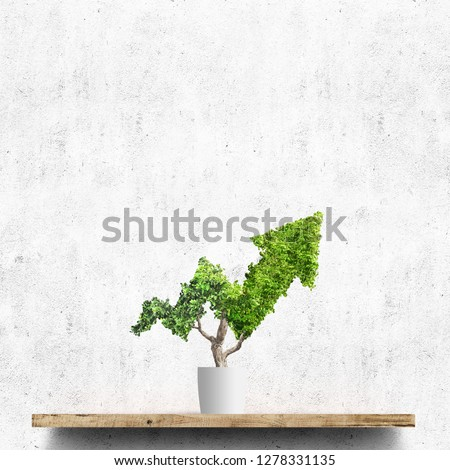 Potted green plant grows up in arrow shape over concrete wall background. Concept business image #1278331135