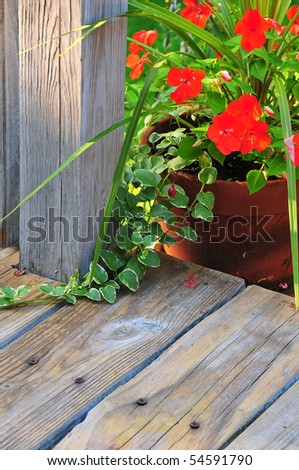 Potted planter with red flowers on gray deck in evening light glow