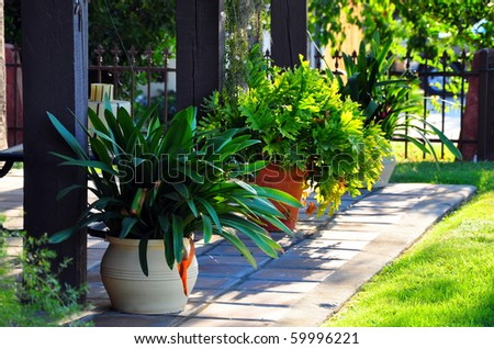 Potted plants on a front porch.