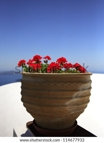 Potted red geranium against a blue sky, Santorini