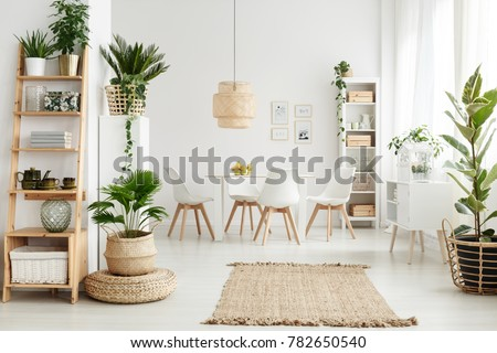 Pouf and brown rug near white cupboard in natural dining room interior with white chairs, plants and wooden shelves #782650540