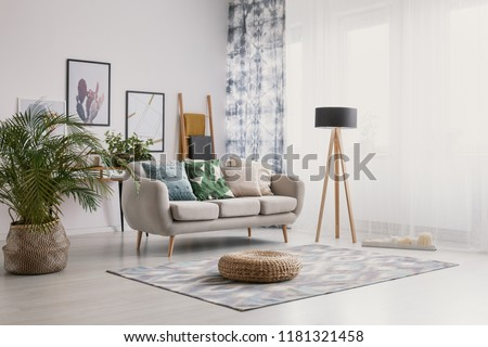 Pouf and plant near settee with pillows in bright apartment interior with lamp and posters. Real photo