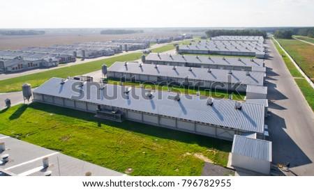 poultry farm industrial