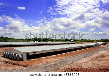 Poultry farm showing houses with a blue sky