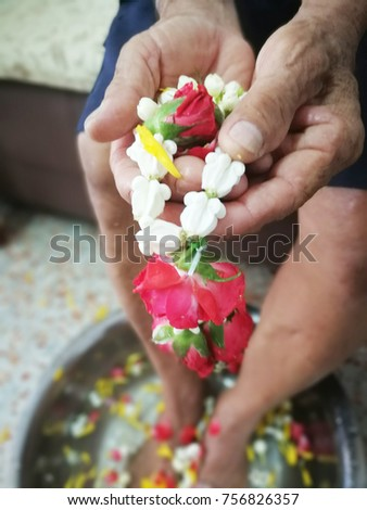 Pour water on the hands of revered elders and ask for blessing in Songkran festival and party background wallpaper concept. #756826357