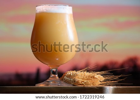 Poured glass of a creamy, hazy India pale ale craft beer from a small micro brewer, with a sunset farm background. Stok fotoğraf ©