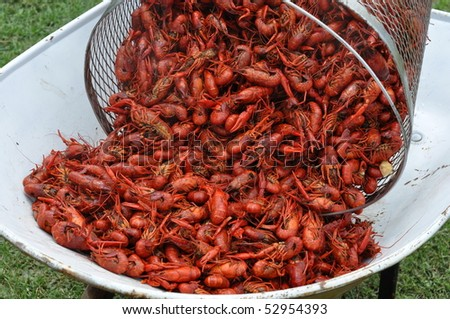 Pouring A Basket Of Boiled Crawfish