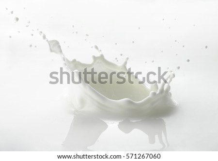 Pouring milk splash isolated on white background