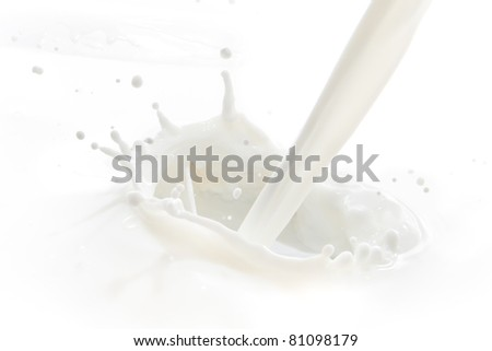 pouring milk splash isolated on white background - stock photo