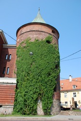 Powder tower in Riga overgrown with convolvulus, Latvia