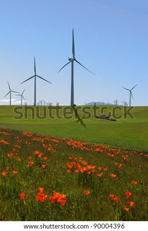 Power generating windmills, electrical turbines behind green pastures and California Poppies.