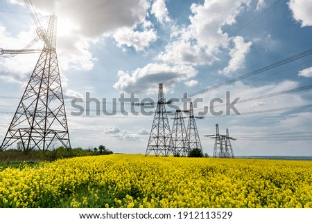 power line pylons in a blooming colza field with a beautiful saturated sky. distribution, transmission and consumption of electricity Photo stock ©