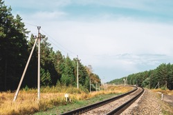 Power lines along railroad. Poles with wires along rails in sunlight. Electricity poles near coniferous forest with copy space. Sunny railway landscape.