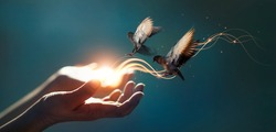 Power of hope and faith, Abstract, Woman praying and free bird enjoying nature on magical background, Religion concept.