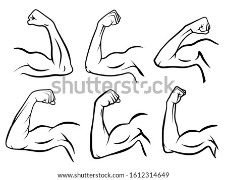 Powerful hand muscle. Strong arm muscles, hard biceps and hands strength outline. Muscular logo, healthy bodybuilding bicep badge or gym logotype. Isolated  illustration signs set