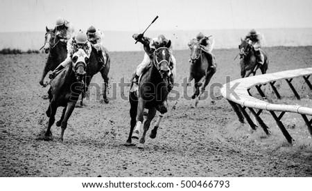 Powerful horses #500466793