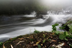 Powerful mountain river flow through forest. Frozen motion of mountain river rapids. Power majestic nature of highlands. Aqua turbulence.