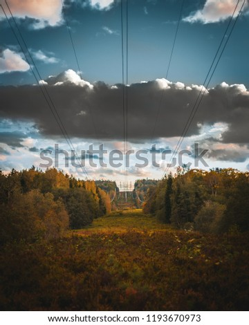 Powerlines going through a forest far in the distance. Krimulda, Latvia #1193670973