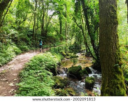 PR AS 137 trail between Valbucar and Busllaz villages, also known 'Molinos del profundu', Villaviciosa, Asturias, Spain Foto stock ©