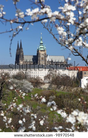 Prague Castle with spring garden in Czech Republic