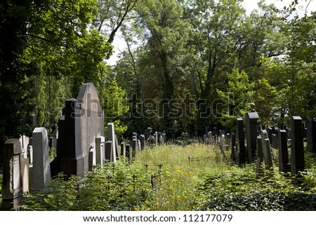 Prague - New Jewish Cemetery in Vinohrady Quarter