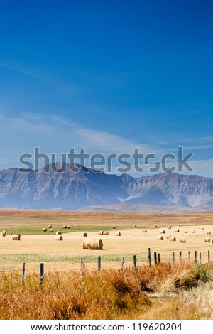 Prairie and farmlands in the foothills of southern Alberta, Canada