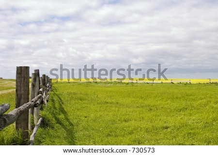 Prairie landscape with old fence line.
