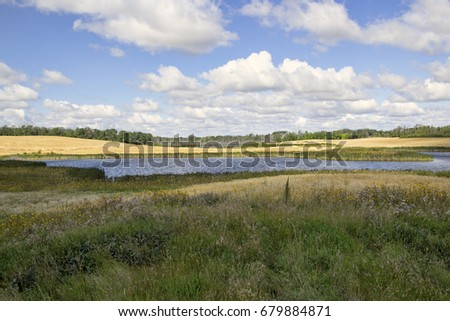 Prairie landscape with unbroken natural grasses in the foreground and wheat fields in the distance. #679884871