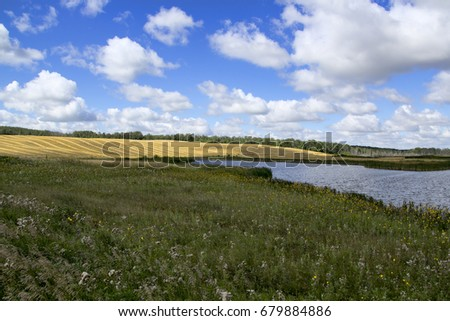 Prairie landscape with unbroken natural grasses in the foreground and wheat fields in the distance. #679884886