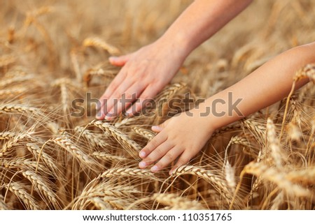 Praise and value mother nature feeding us - child and woman hand touching wheat