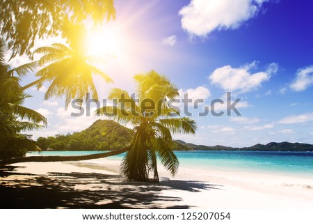 Praslin island, Seychelles. The island of dreams for a rest and relaxation. White coral beach sand. Sunset.